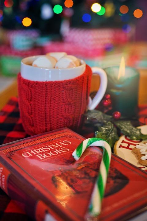 christmas-3000059_960_720